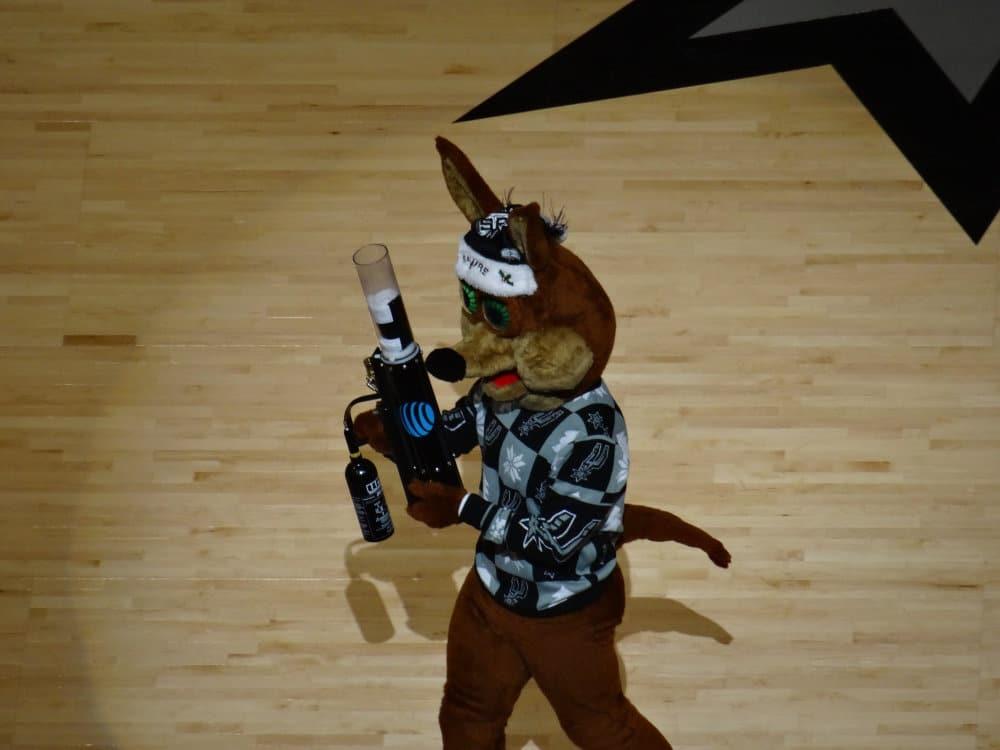 Le coyotte, mascotte des San Antonio Spurs