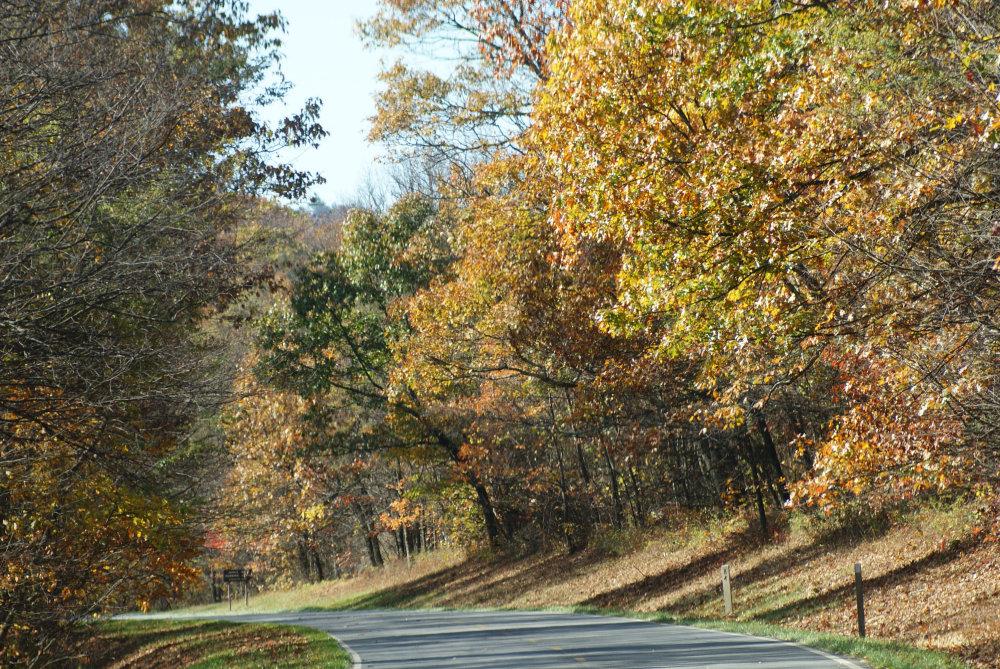 Les couleurs d'automne dans les forêts de Shenandoah