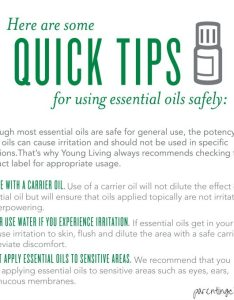 Essential oils what is  carrier oil also letter of the week for apple craft rh parentingchaos