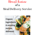 Meal delivery services like Blue Apron, Hello Fresh, and Sun Basket are all the rage. Get a dietitian's review of meal delivery services!