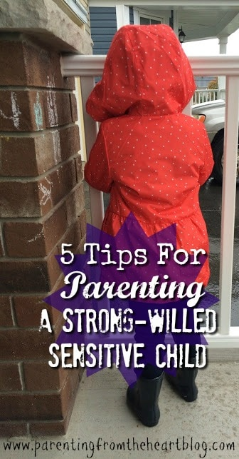 A dynamic, inquisitive, sensitive girl, my daughter is anything but placid. Here are 5 tips for parenting a strong-willed, sensitive child.