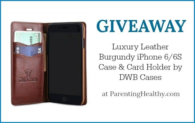 Luxury Leather Burgundy iPhone 6/6S Case & Card Holder by DWB Cases