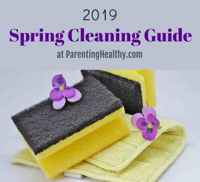 2019 Spring Cleaning Series