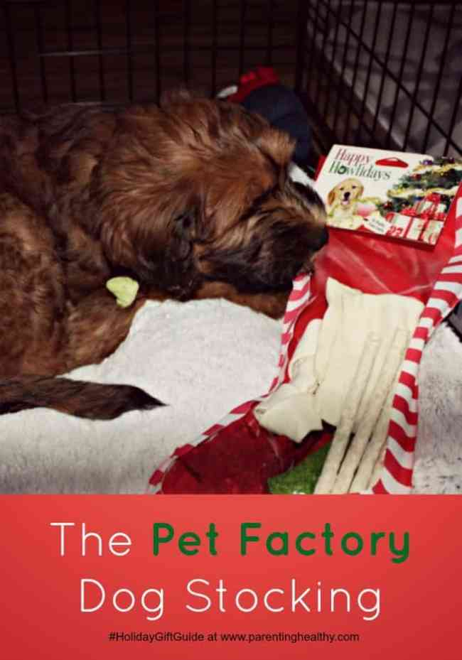 Pet Stocking Gift From The Pet Factory