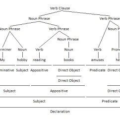 Diagram Appositive Phrases Pupil Size Using Verbs And Verb As Appositives Parenting Patch Phrase Grammar Tree