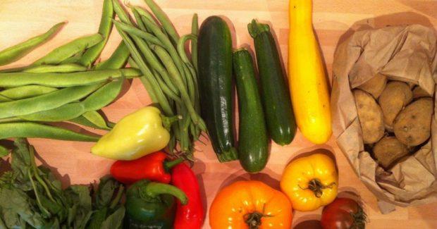 Conseils pratiques et astuces pour faire manger des légumes aux enfants.