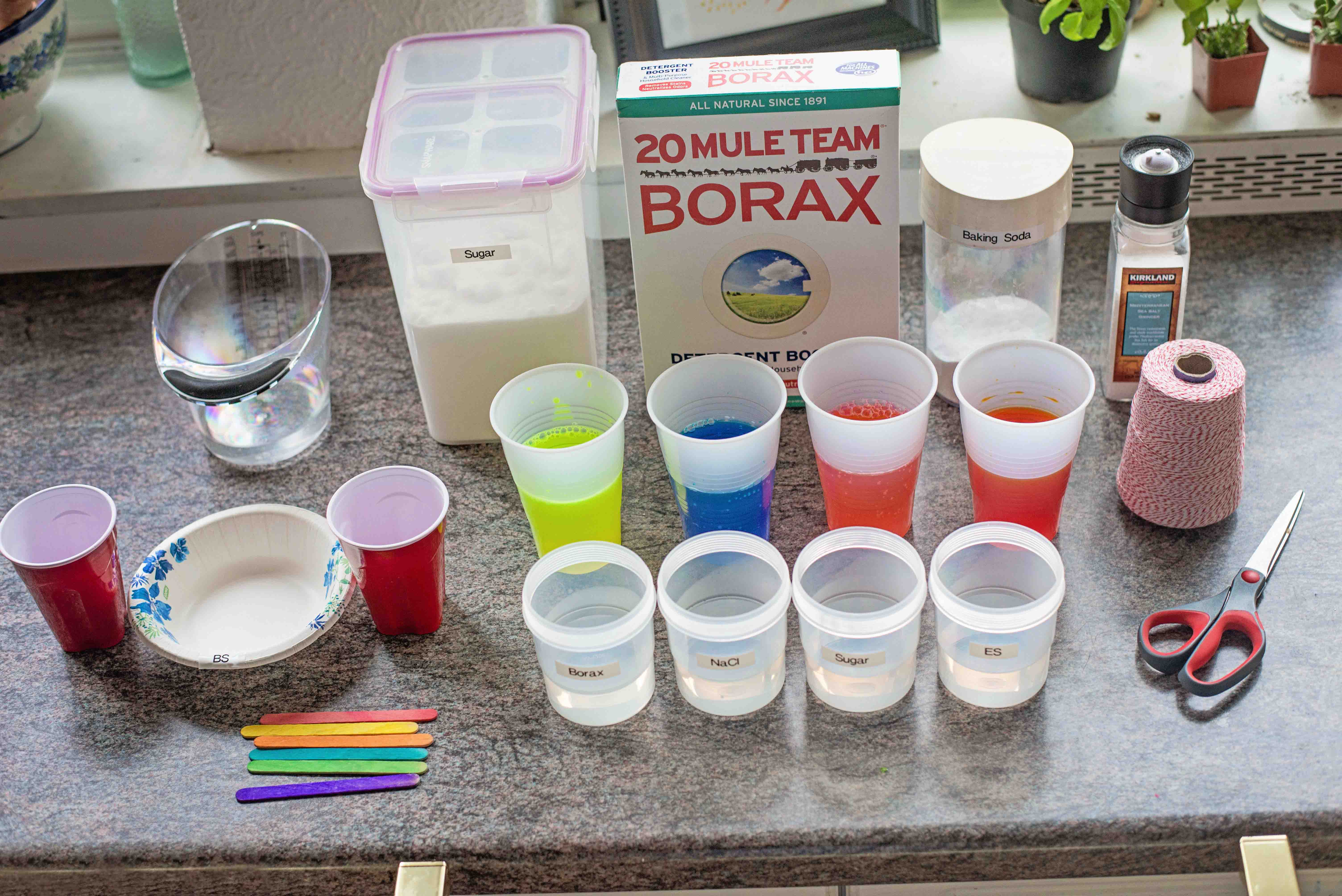 borax crystal diagram 12v photocell switch wiring growing glowing crystals parentsavvy how to grow and what do with them once you re