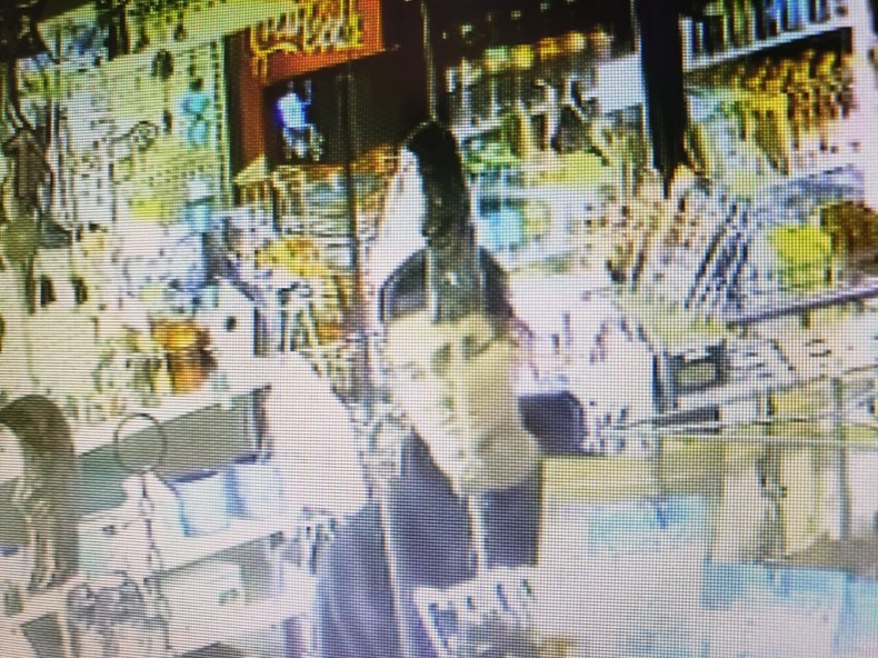Photos - Shellbrook RCMP: looking for truck involved in theft and hit and run in Holbein_0