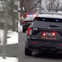 #childpredator | WATCH: Police Pursuit Suspect Crashes into Snowbank, Arrested in Spring Valley