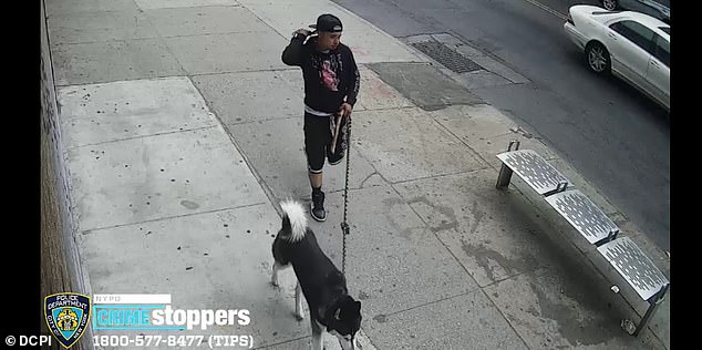 In the first case, Rodriguez allegedly approached a 13-year-old girl at around 7:39 am on Monday, May 24, and asked him to take a picture of him with his dog.
