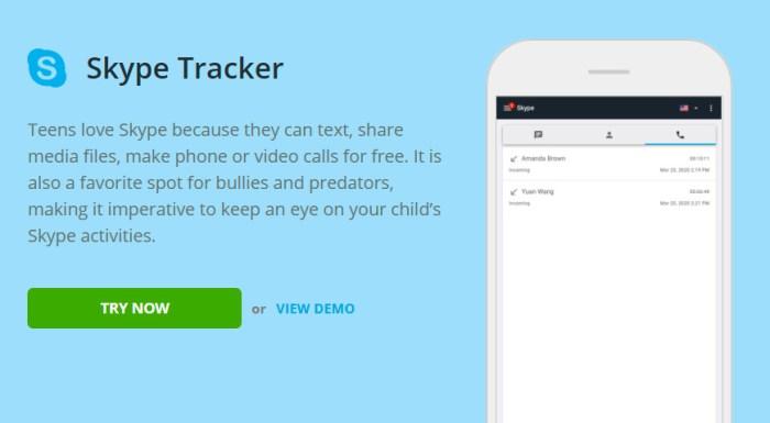 Skype monitoring for iPad Air 3