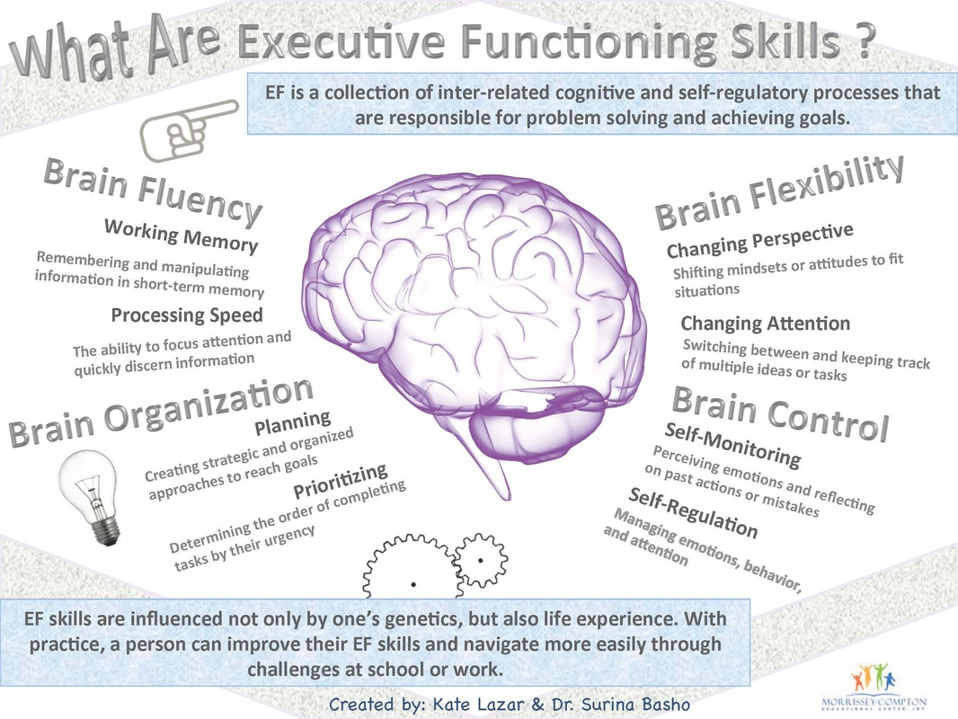 What Is The Buzz About Executive Function How Can It Help