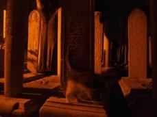 Yeni Camii, Nová mešita a její přízraky
