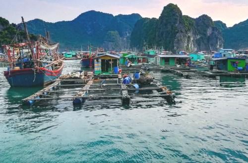 blog-voyage-couple-parfums-de-liberte-leo-et-julie-petit-budget-article-vietnam-guide-complet-baie