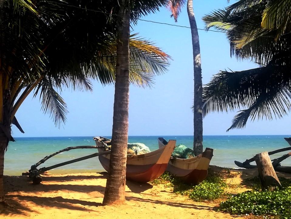 blog-voyage-couple-parfums-de-liberte-leo-et-julie-petit-budget-sri-lanka-guide-complet-tourisme-spot