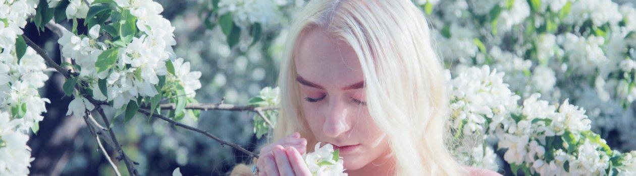 Parfumseminar Titelbild