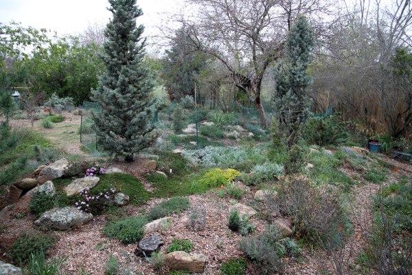 ugly garden miserable