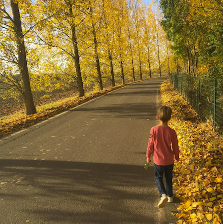 quitter-paris-lille-automne