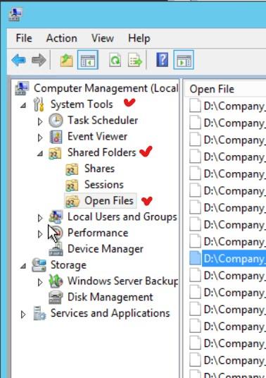 File aperti in Window Server