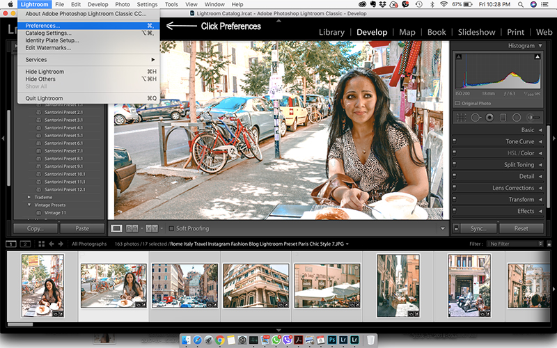 Click Preferences Lightroom Paris Chic Style