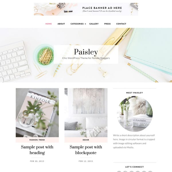 How to start a blog lifestyle finance travel fashion food blogger fitness health beauty beginners easy tutorial Best Theme For Blogs Bluchic Themes Paris Chic Style 2
