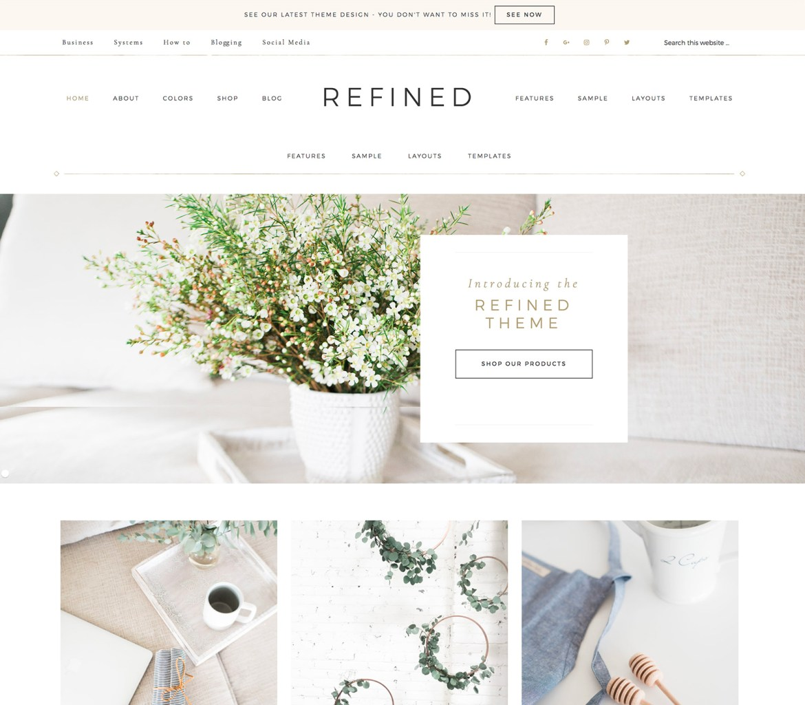 How to start a blog lifestyle finance travel fashion food blogger fitness health beauty beginners easy tutorial Best Theme For Blogs Site StudioPress Themes Paris Chic Style 3
