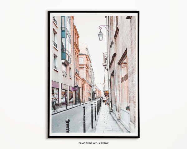 demo_paris_chic_style_france_paris_wall_art_travel_parisian_streets_theme_decor_print-12-1