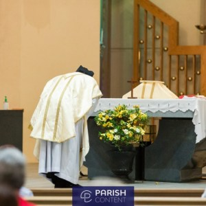 Priest Readings During Mass