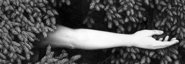 Véronique Dorey Der Wald - Copie