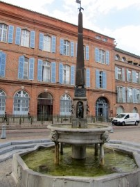 Toulouse la ville rose (79)
