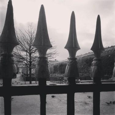 Une année parisienne (79)