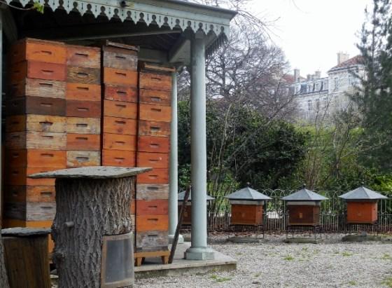 Jardin du Luxembourg - Rucher-école