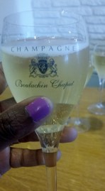 Champagne Day 2015 Champagne Boulachin-Chaput (3)