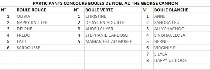 20151216CONCOURS BOULES NOEL GEORGE CANNON (4)