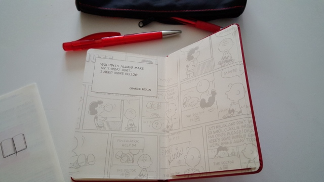 Agenda Peanuts Moleskine (8)