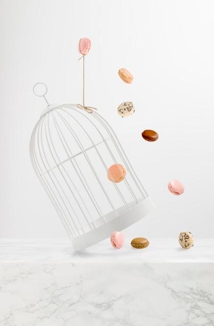 Bac Sucré DALLOYAU macarons -- P.Vaur--s pour DALLOYAU (419x640)
