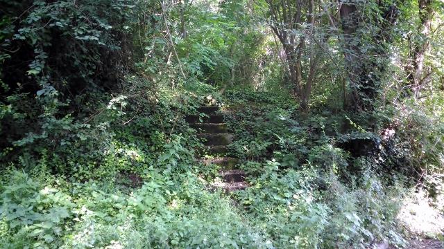 Sherwood Parc (1)