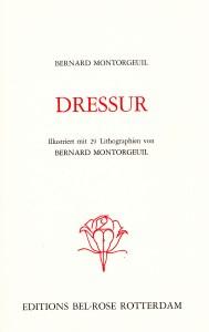 Dressur_0004