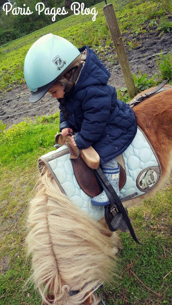 la-chevelue-poney