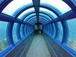 aquarium bawah laut