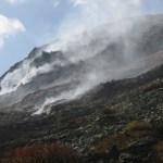 Опожарена тревна растителност