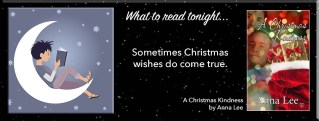 A Christmas Kindness By Anna Lee