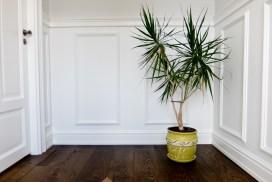 Põranda202