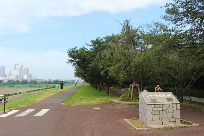 多摩川ガス橋緑地
