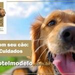 hotel fazenda que aceita cachorro em sp