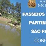 passeios rápidos partindo de São Paulo