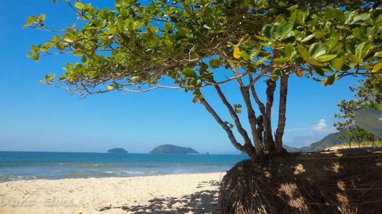 praia-do-puruba-ubatuba