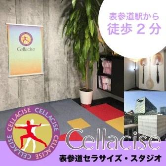表参道セラサイズスタジオ
