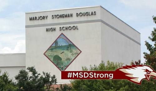 Grief Counseling Available for Stoneman Douglas Students and Staff