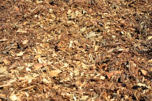 leaf mulch parklea sand and soil